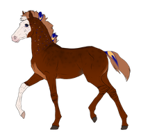 N3292 Padro Foal Design for DreamDrifter91 by casinuba
