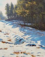 Australian Winter by artsaus