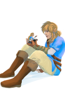 Link BOTW by SosinSoup