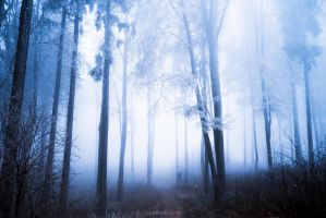 Clearest Blue by hannes-flo
