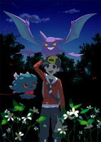(Pokemon) Chance Encounter (ReaderxVarious) 2