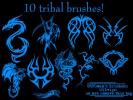 Tribal brushes by OMFGman