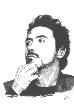 Robert Downey jr. by Bartleby91