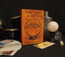 The Art of Divination by Spoon333