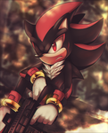 Shadow the Hedgehog by Ami-Dark