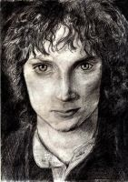 Elijah Wood - Frodo Baggins by AmrasVeneanar