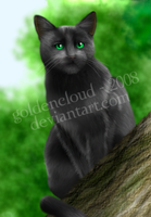 Hollyleaf by Goldencloud