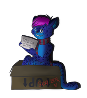 I got my box back by miaoutastique