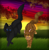 Leafpool and Crowfeather - Never too late by Sungleam