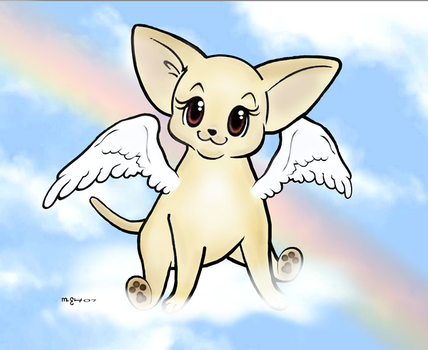Chihuahua: Smooth Angel Puppy by msmickimac