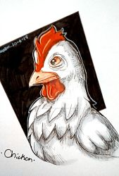 Inktober|Day 5|Chicken by Shadow-Turtle-234