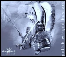 polish hussar 4 by dugazm