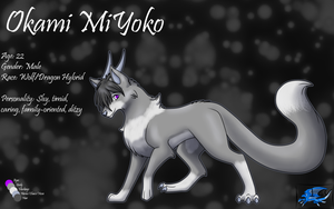 Okami Reference by Icy-Marth