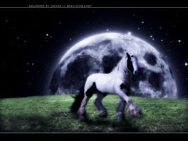 moonlit run by Rebellaire