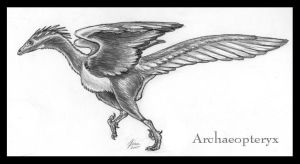 Archaeopteryx lithographica by SageKorppi
