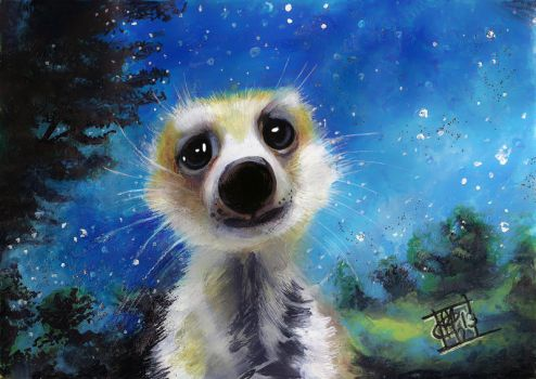 sad meerkat by clefchan