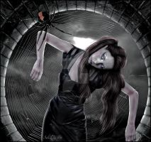 the spider web by Mayagraphic