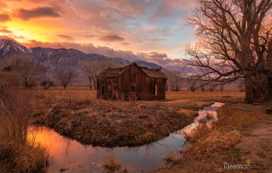 This Old House by tassanee