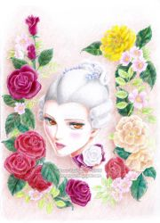 : Rose Blanche : by IreneRoga