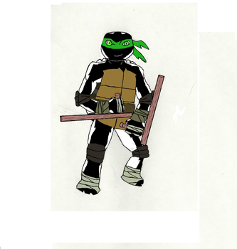 Danny as a Teenage Mutant Ninja Turtle by TheWhiteTitan
