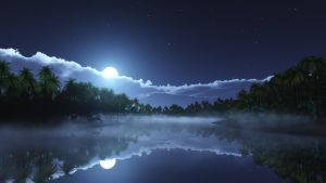Tropic cold_night by relhom