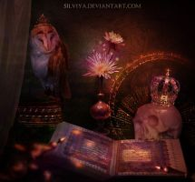 The Book Of Shadows by silviya