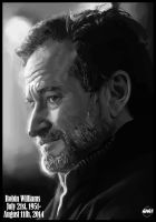 Tribute to Robin Williams by Paganflow