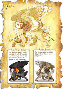 Flight Rising Bestiary: Owlcat by neondragon