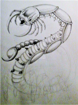 Unfinished Creature Design by Maulgrymm