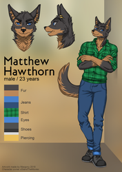 Matthew reference commission by Margony