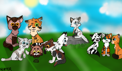 A Kind Of Sunny Day in RushClan by Winter5587