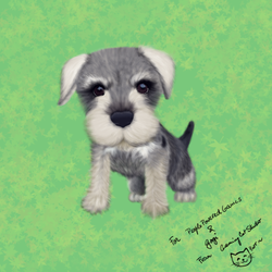 Schnauzer puppy by GamingCatsStudio