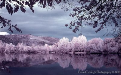 Infrared Secluded View by La-Vita-a-Bella