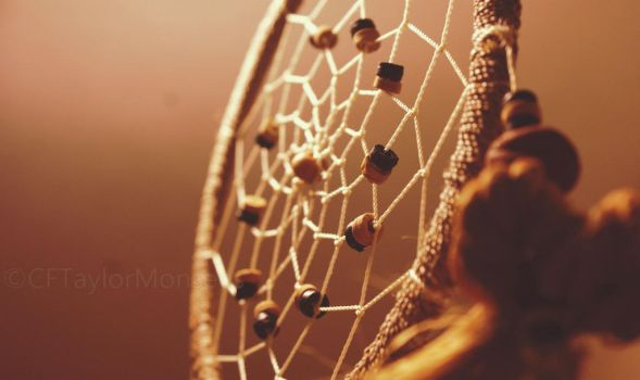 Dreamcatcher In The Light by CFTMPhotography