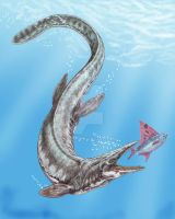 Tylosaurus proriger by DiBgd