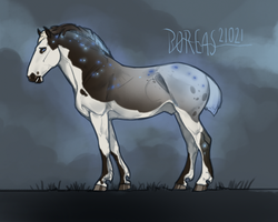 21021 Boreas by NorthEast-Stables