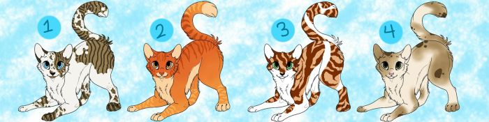 Cat Adoptables Closed! by Paradise--Adopts