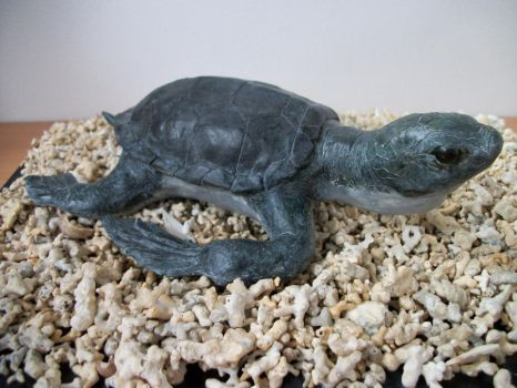 Turtle, turtle by Gir-the-piggy-lord