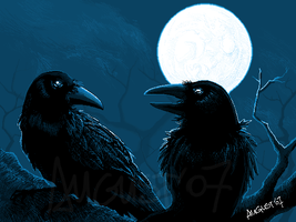 Two Ravens by AugustAnna