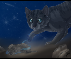 Cinderpelt's Second Chance by TheMoonfall