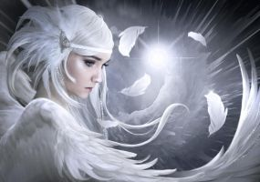 White feathers by ElenaDudina