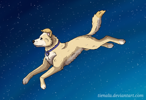 Leap to the Stars by Tienala