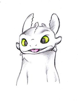 Toothless by liz732