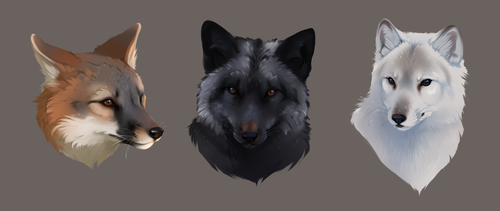 Foxes by Foxjot