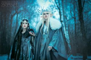 Thranduil and his Wife 02 by Megane-Saiko