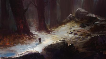 Snowy Path by parkurtommo