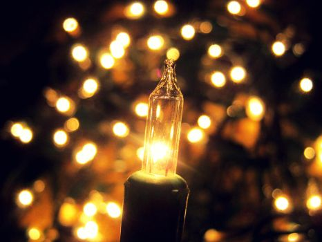 Christmas light by Twillies