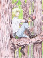 Angelo Cassia-Up in the Trees by happylilsquirrel