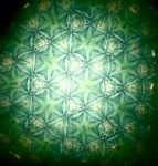 kaleidoscope_green by dragorien
