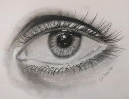 realistic eye with pencil by ahmedsasker